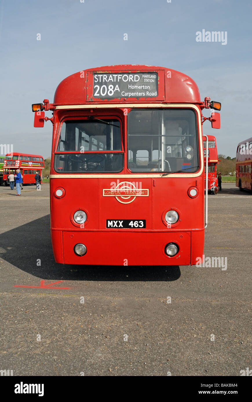 Front view of MXX 463 1952 AEC Regal IV single decker bus London Transport RF 486 at the Cobham Bus Museum Annual - Stock Image