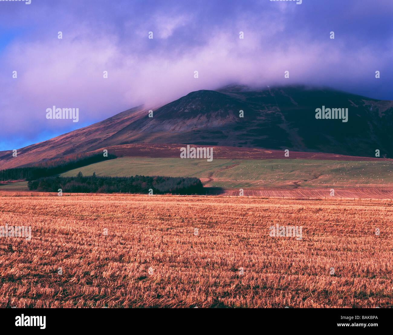 The Tinto Hills ,winter,South Lanarkshire,Scotland,Britain. - Stock Image