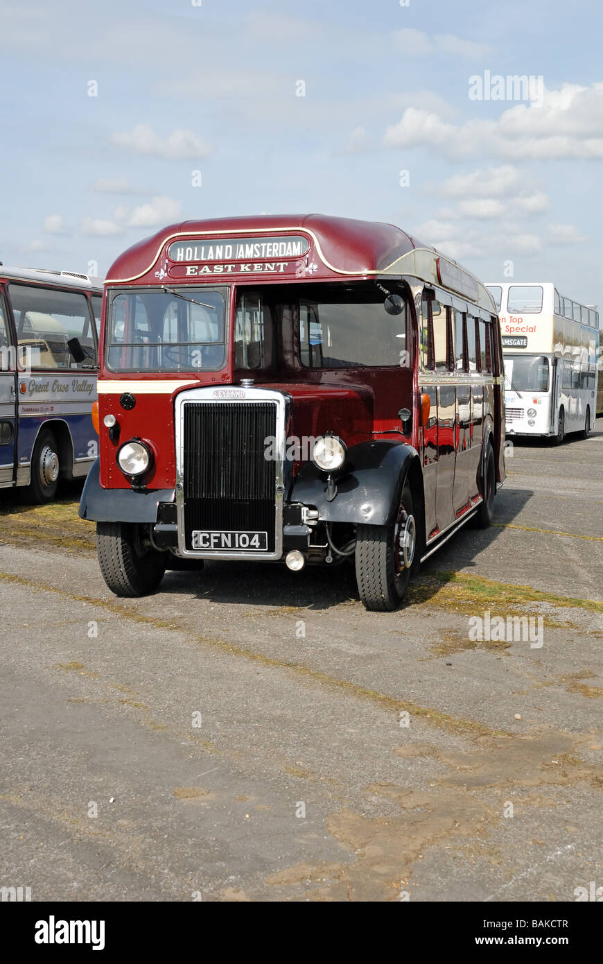 Three quarter front view of CFN 104 a preserved Leyland Tiger PS1 1 with a 7 4 litre engine and Park Royal C32R - Stock Image