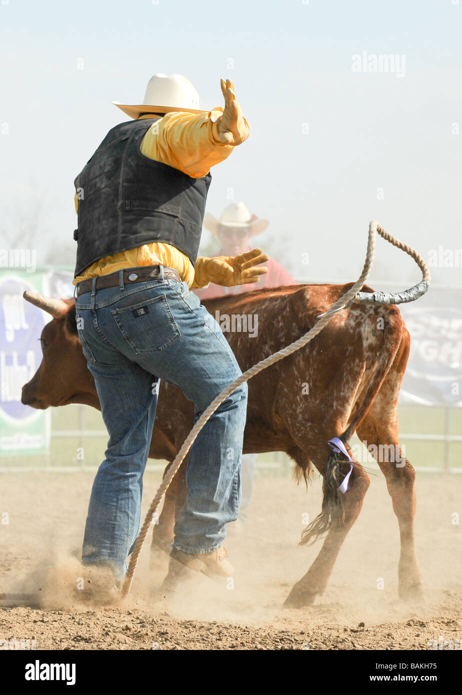 from Miller gay rodeo photos