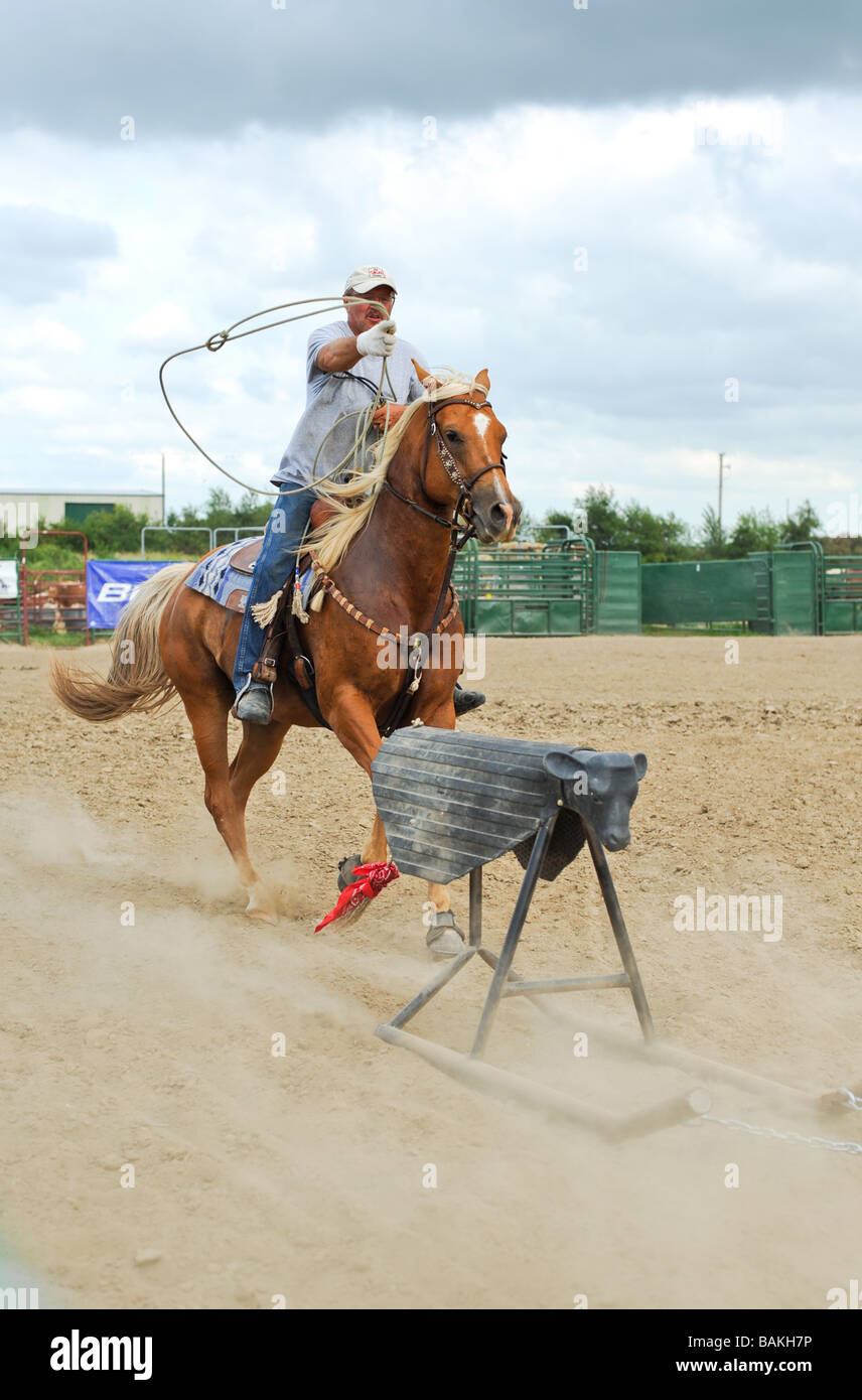 Cowboy practicing his roping skills with an iron calf at the Windy City Rodeo a gay rodeo held annually near Chicago - Stock Image
