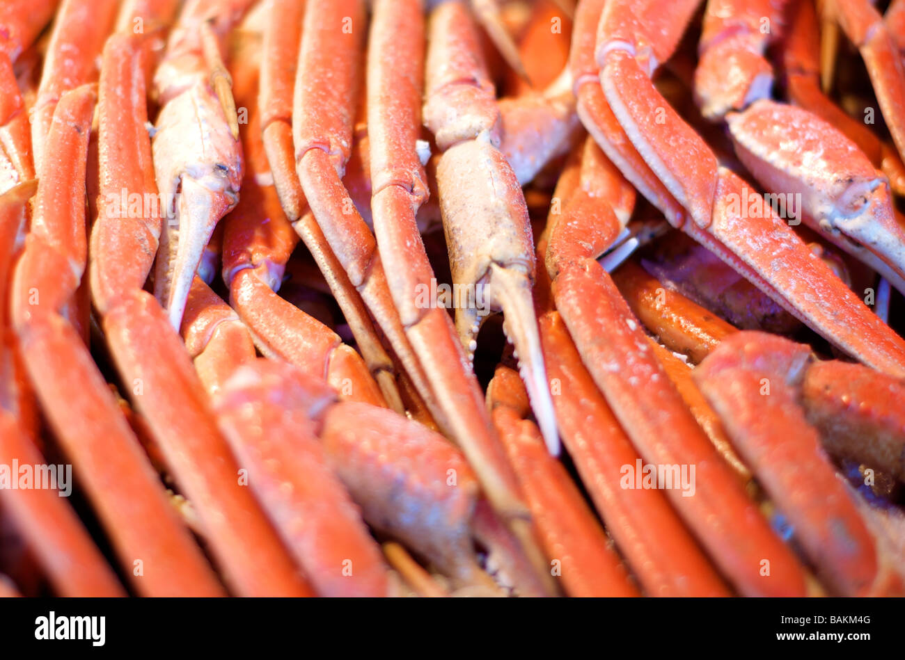 Colourful Closeup Photo of Crab Legs on Display at a Seafood Market - Stock Image