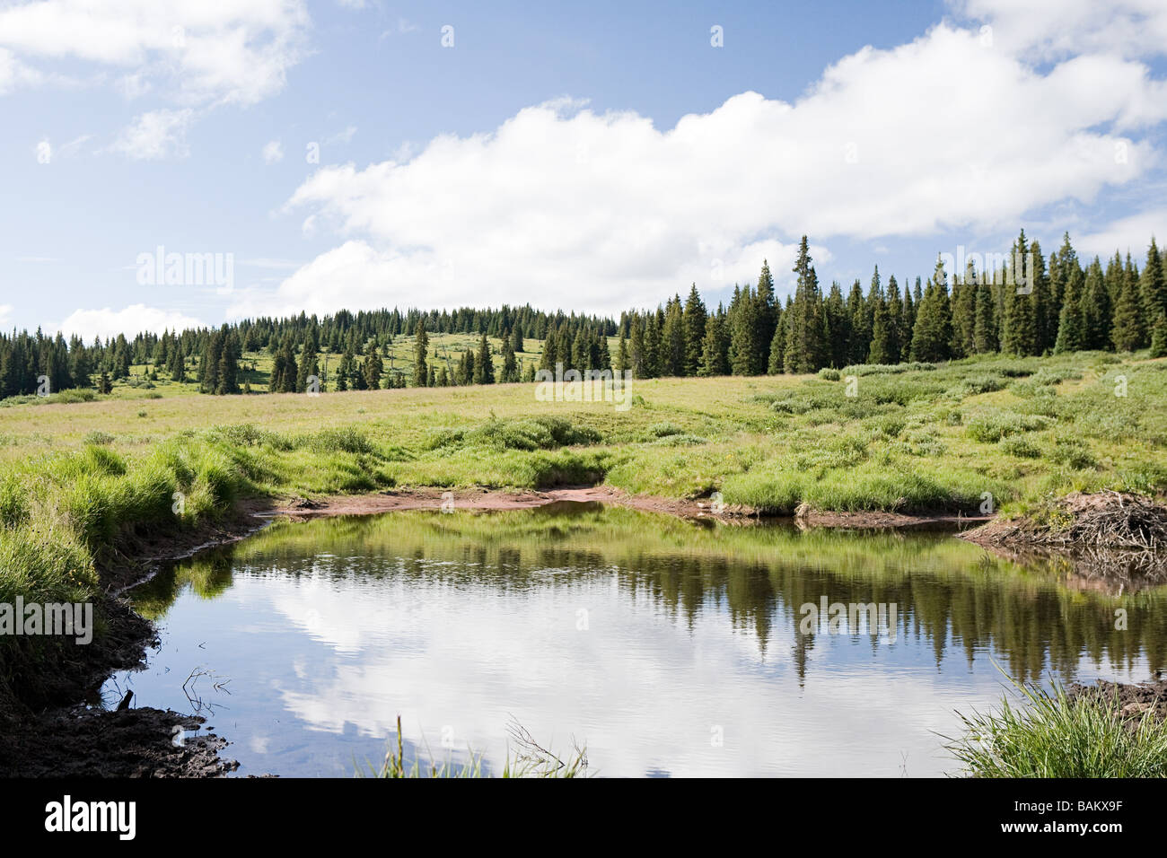 Pond at shrine pass colorado - Stock Image