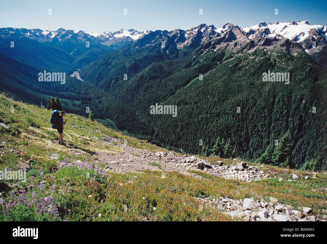 Backpacker on bailey traverse - Stock Image