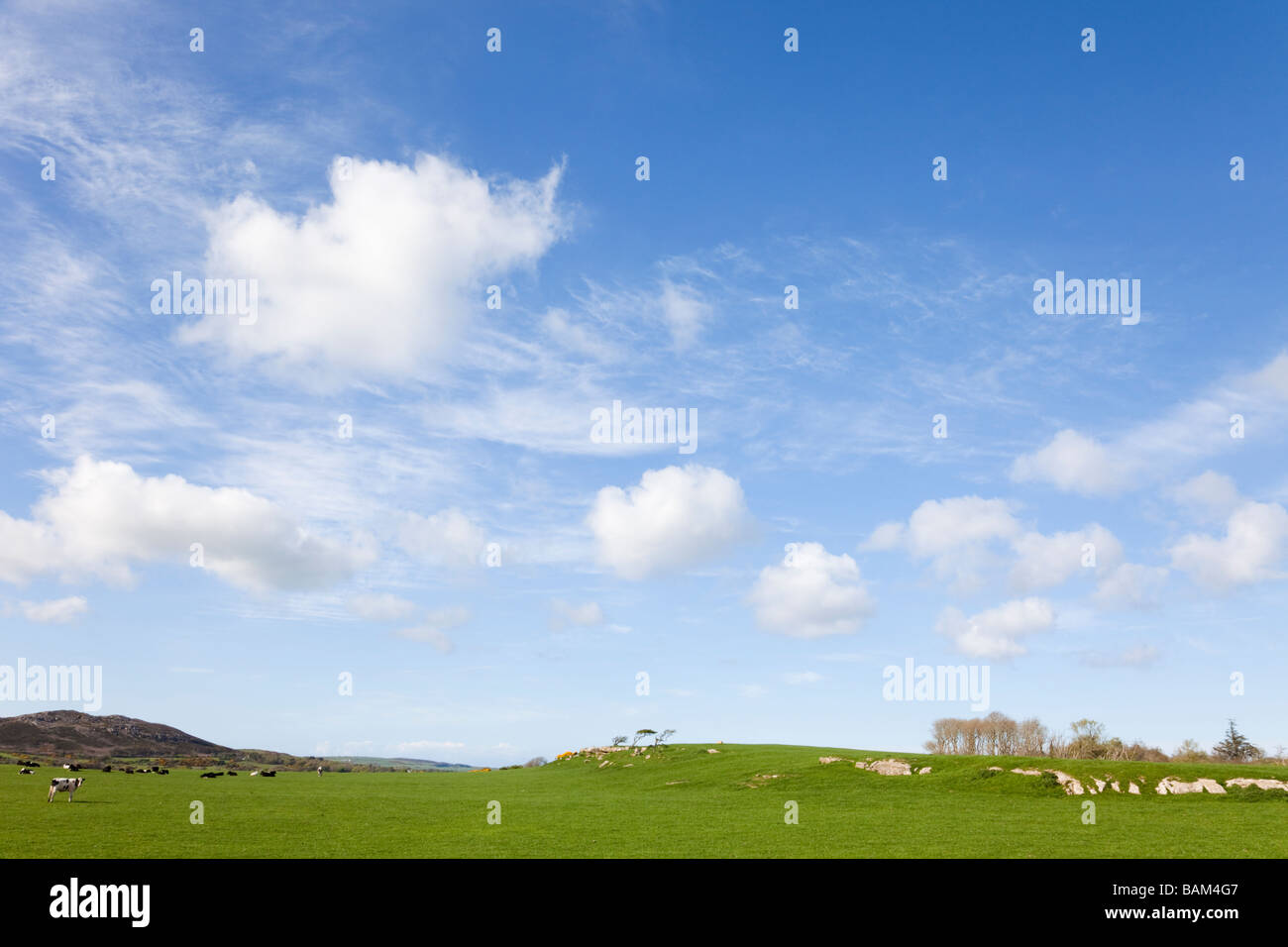 UK Country side scene with big blue sky and white fluffy summer clouds - Stock Image