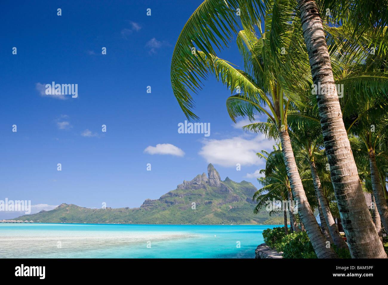 French Polynesia Leeward Archipelago Bora Bora Island