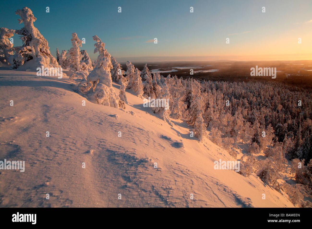 Finland, Lapland Province, Kuusamo, Ruka Jarvi, sunrise over the Taiga Stock Photo