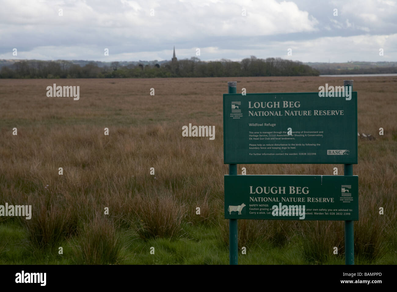 Lough Beg National Nature Reserve and Church Island in the background county derry londonderry northern ireland - Stock Image