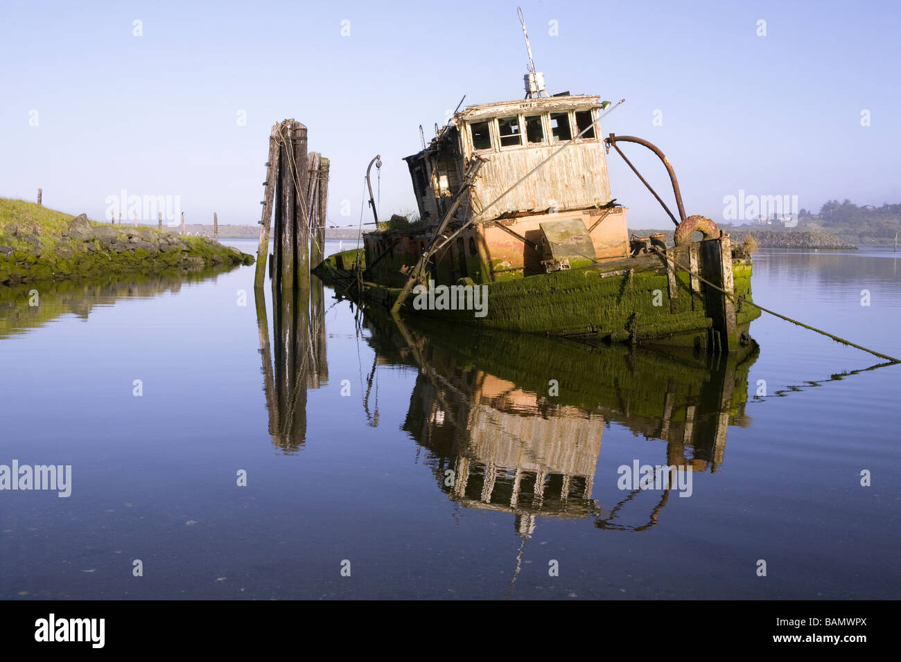 The wroeck of the Mary D Hume in Gold River Oregon - Stock Image