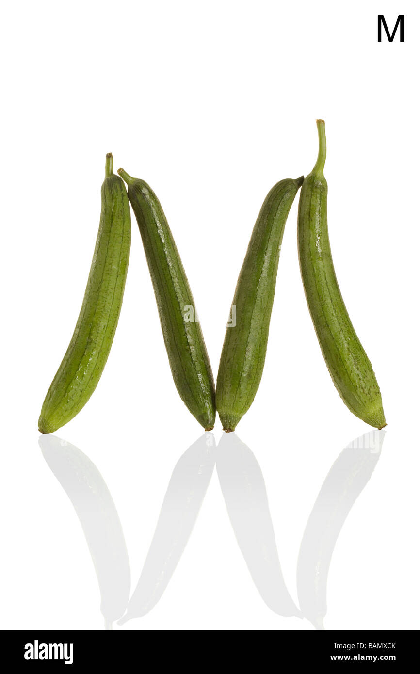From the Health-abet, the Letter M, gourds. - Stock Image