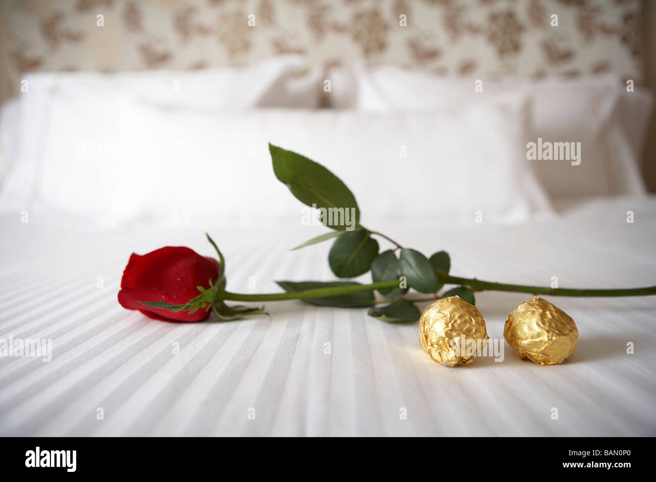 Rose and chocolates on a white bed - Stock Image