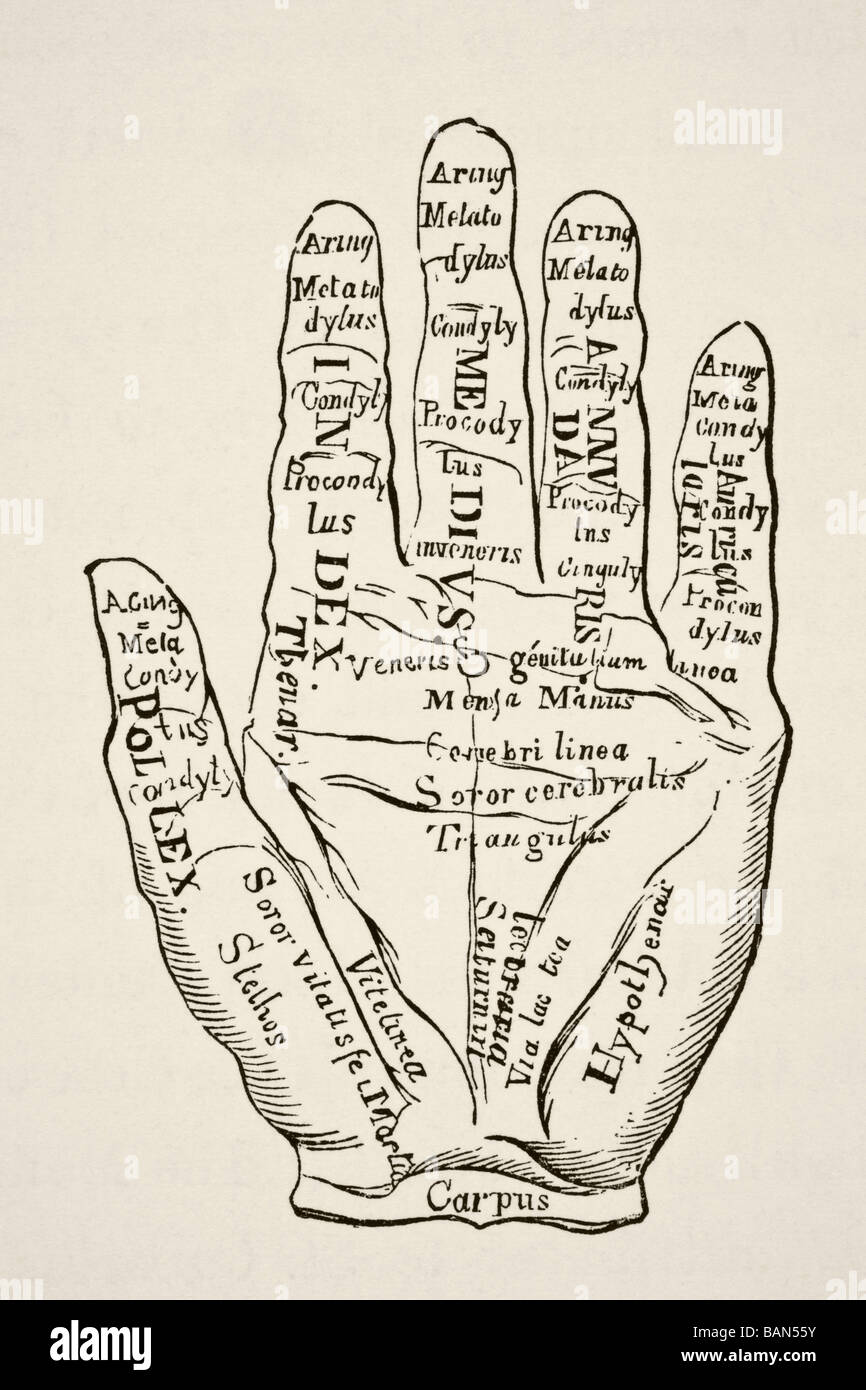 Specimen of the left hand with the lines and their horoscopic denominations. - Stock Image