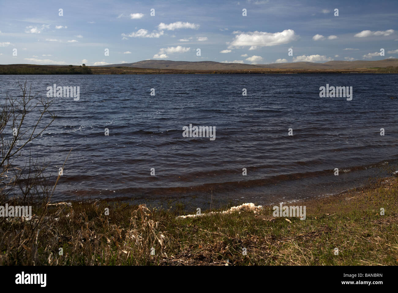 lough fea on the border of county tyrone and county derry londonderry in northern ireland Stock Photo