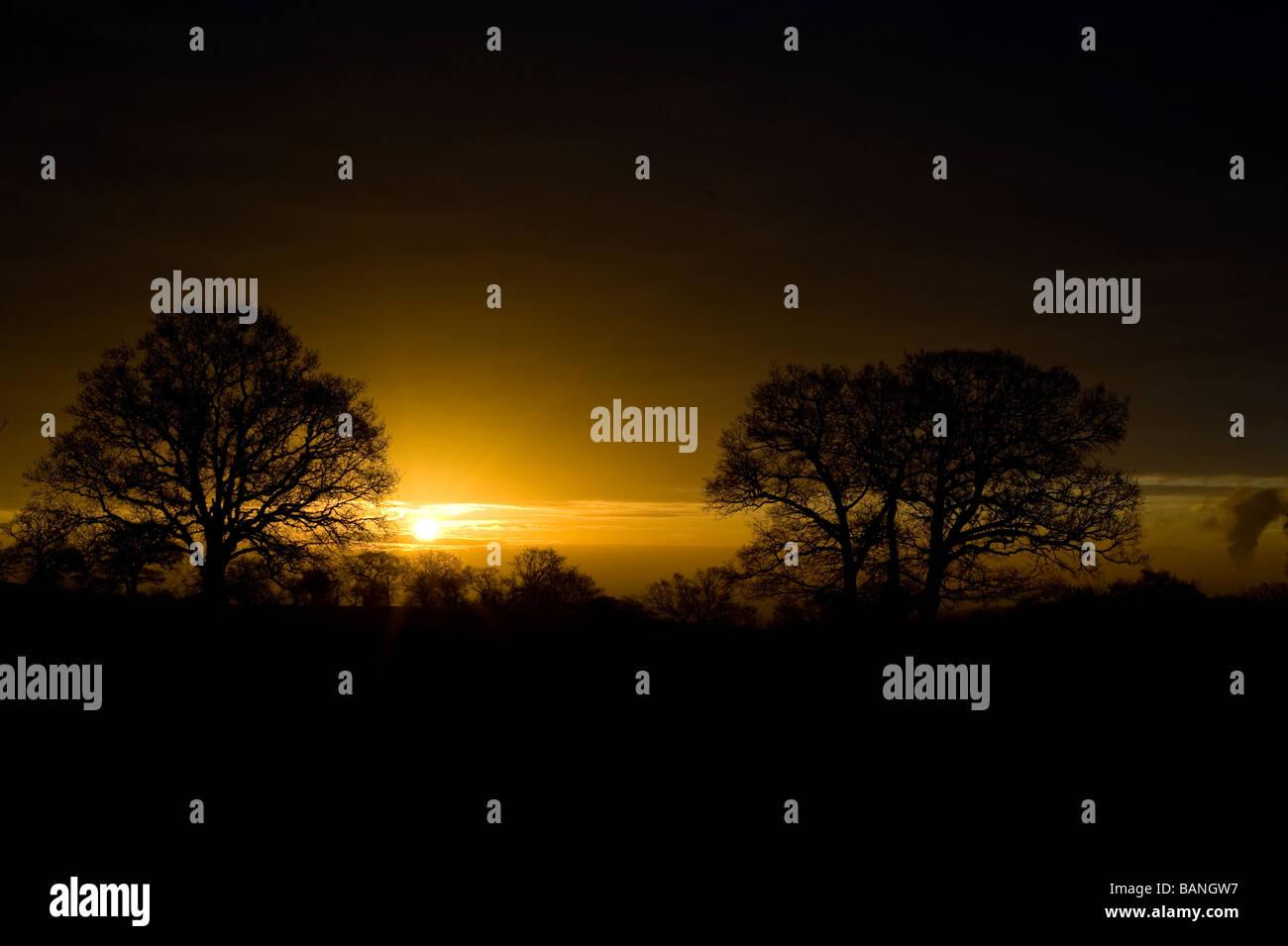 Sunrise at Langdon Hill, Essex - Stock Image