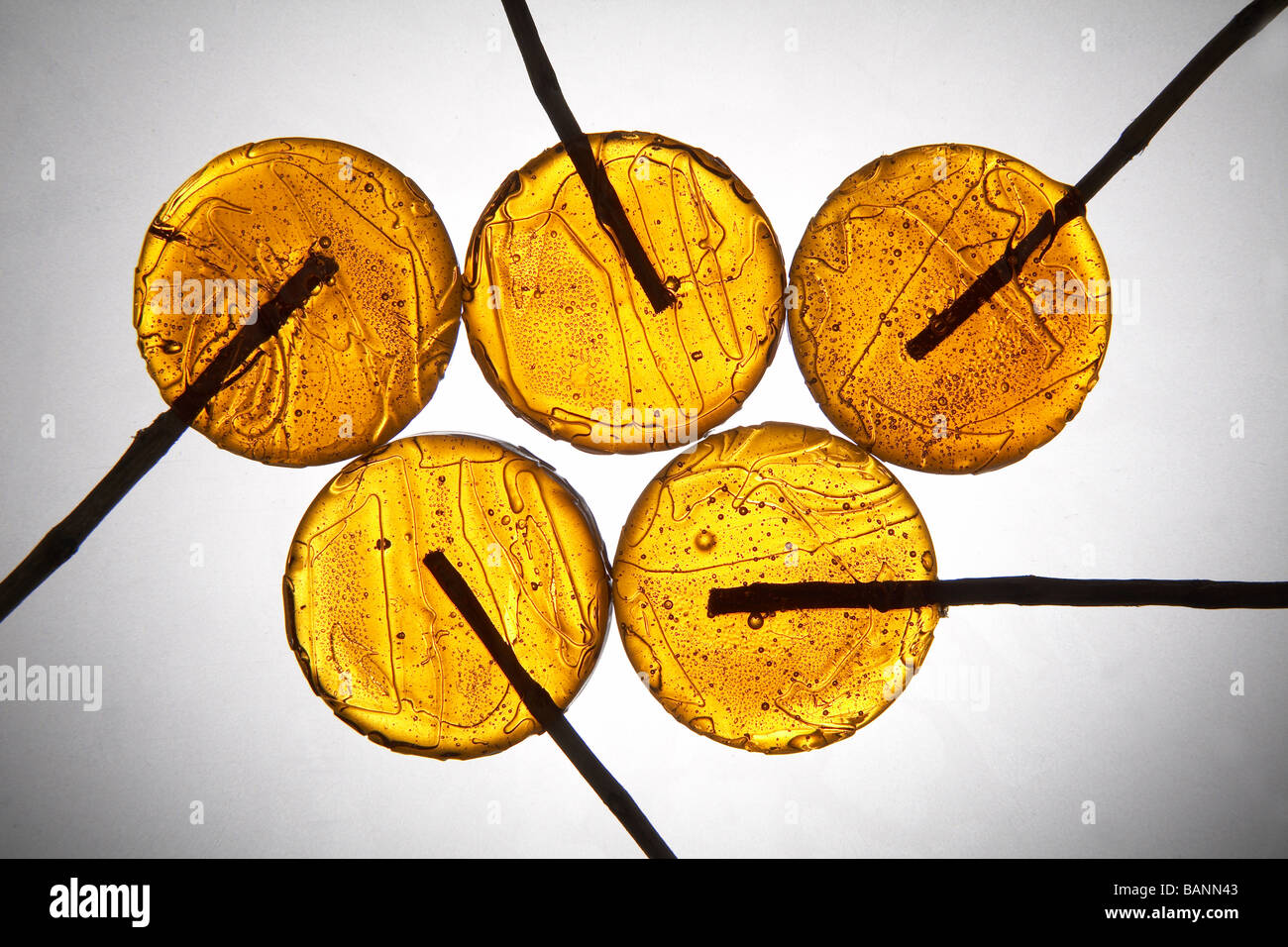 yellow lollipops on light grey background - Stock Image