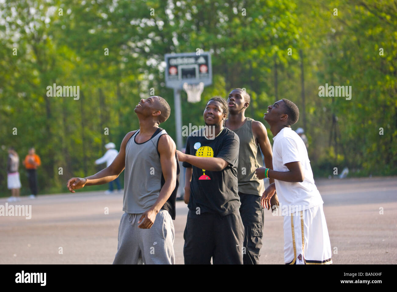 Sunday afternoon. Casual  basketball players watch with joy & bated breath, as their basketball propitiously - Stock Image