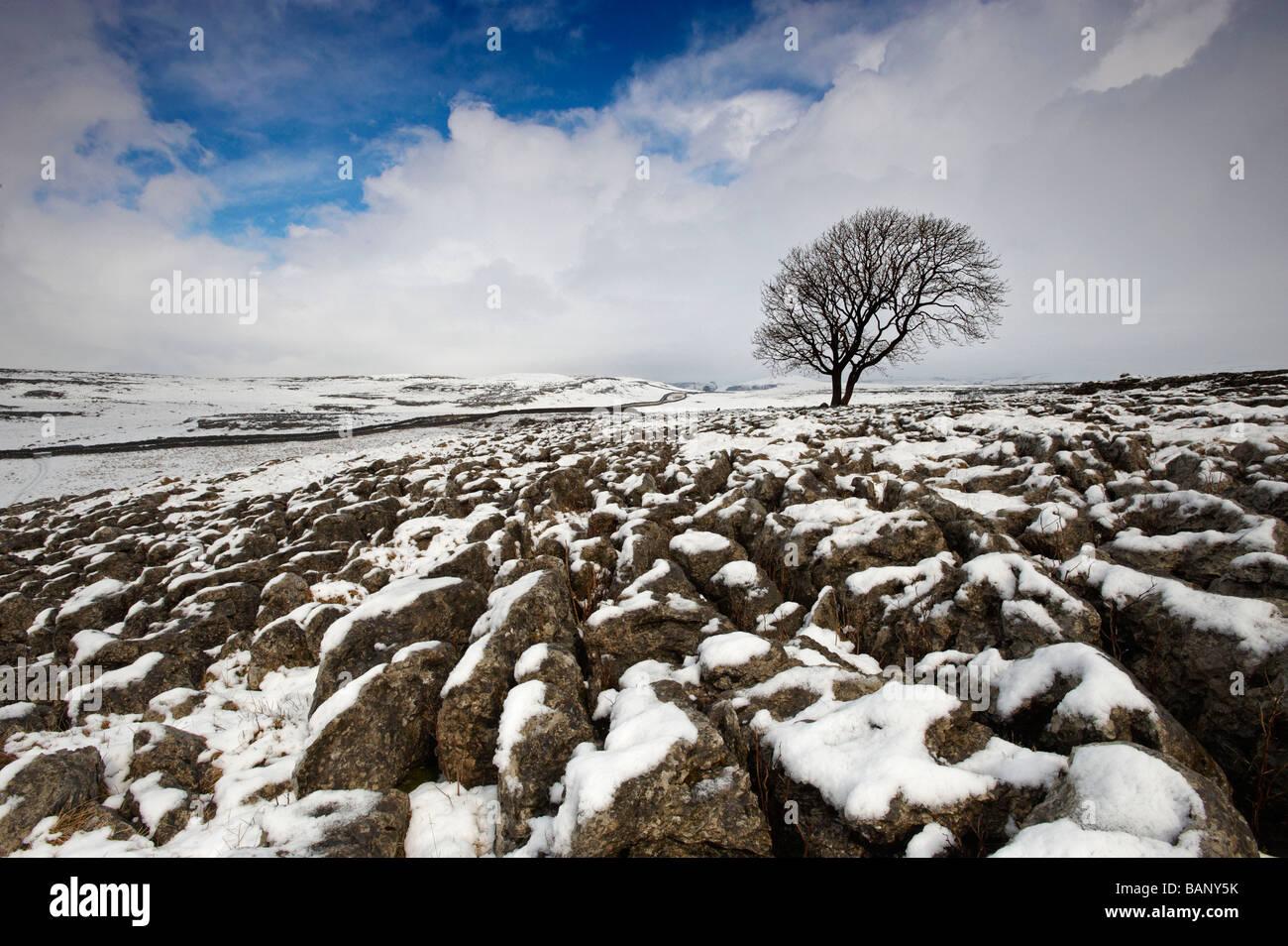 Malham Yorkshire UK - Stock Image