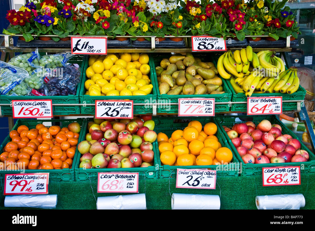 Fruit and Polyanthus bedding plants in tiered display outside a greengrocer shop or store in England UK - Stock Image