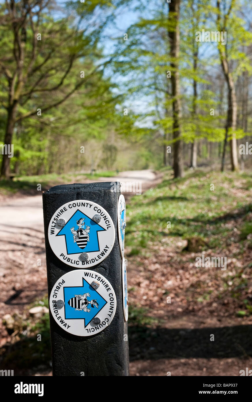 Signs showing directions for public bridleways in West Woods Wiltshire UK - Stock Image