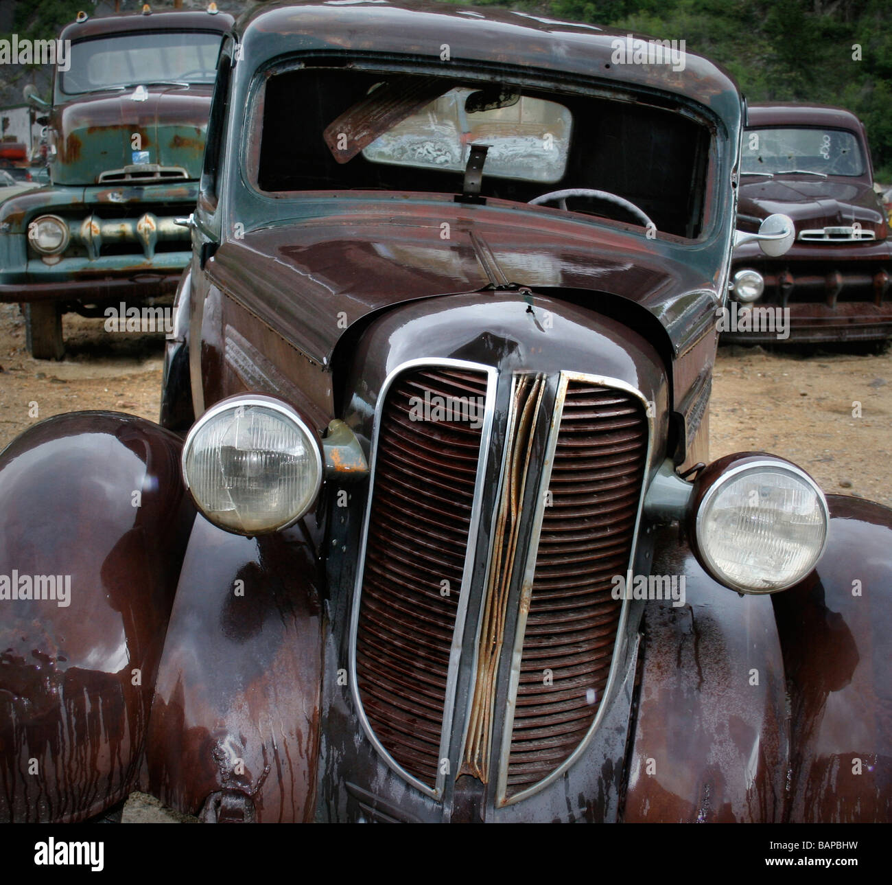 Old rusted cars in the rain at the junkyard looking sad Stock Photo ...