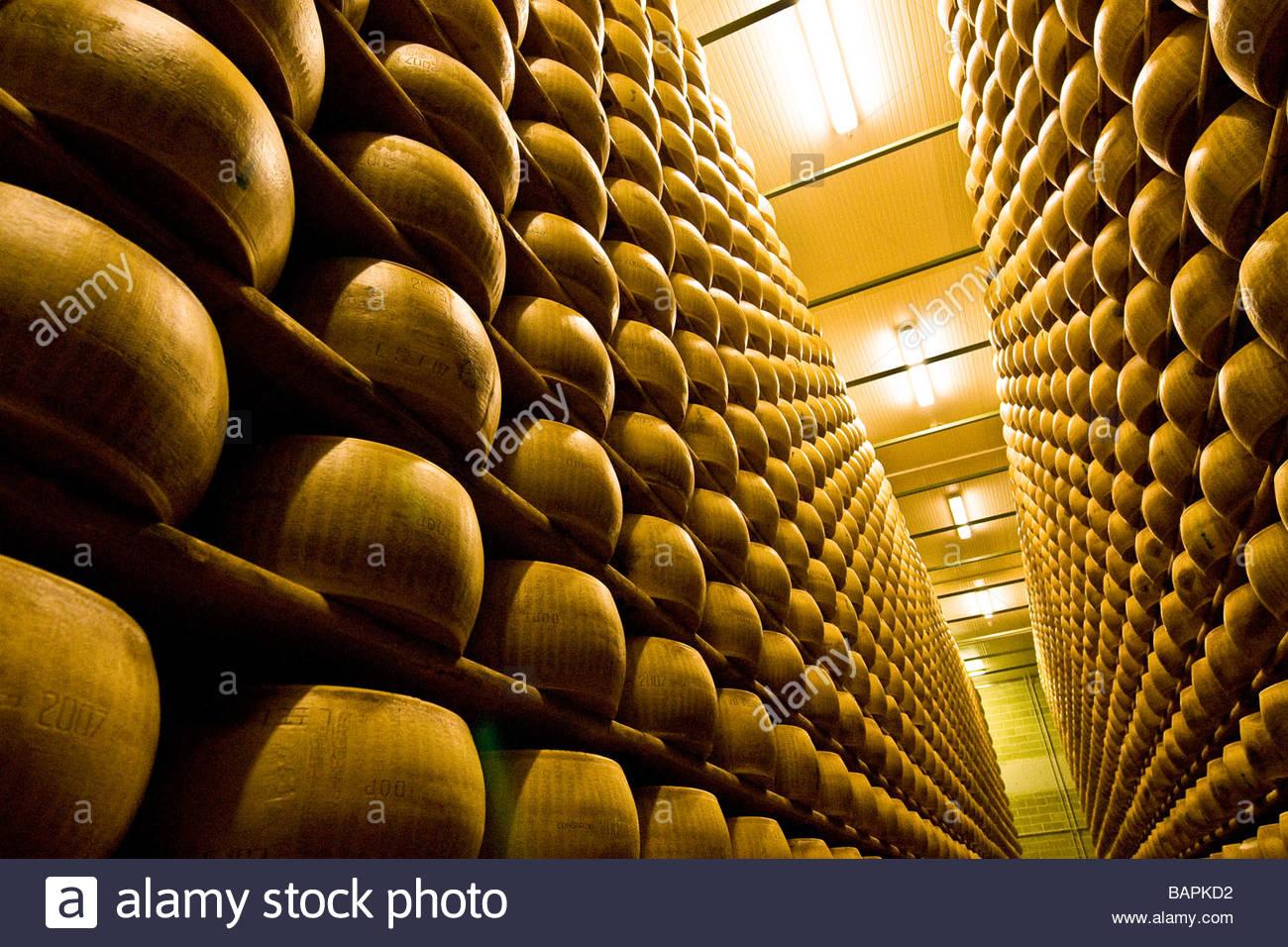 parmigiano reggiano  cooperativa casearia castelnovese  castelnuovo rangone  emilia romagna  italy Stock Photo