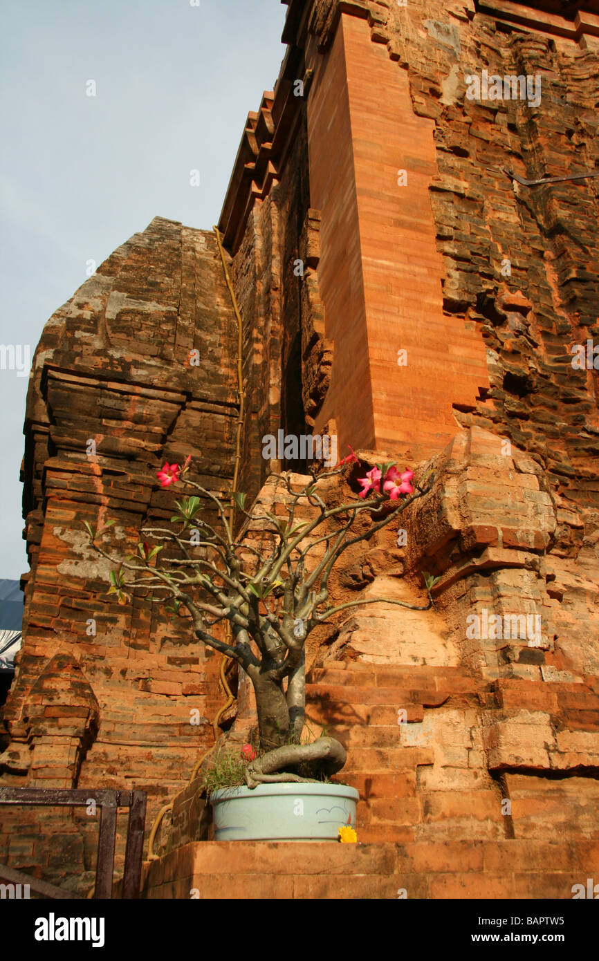 The Cham Towers, Nha Trang in Vietnam - Stock Image