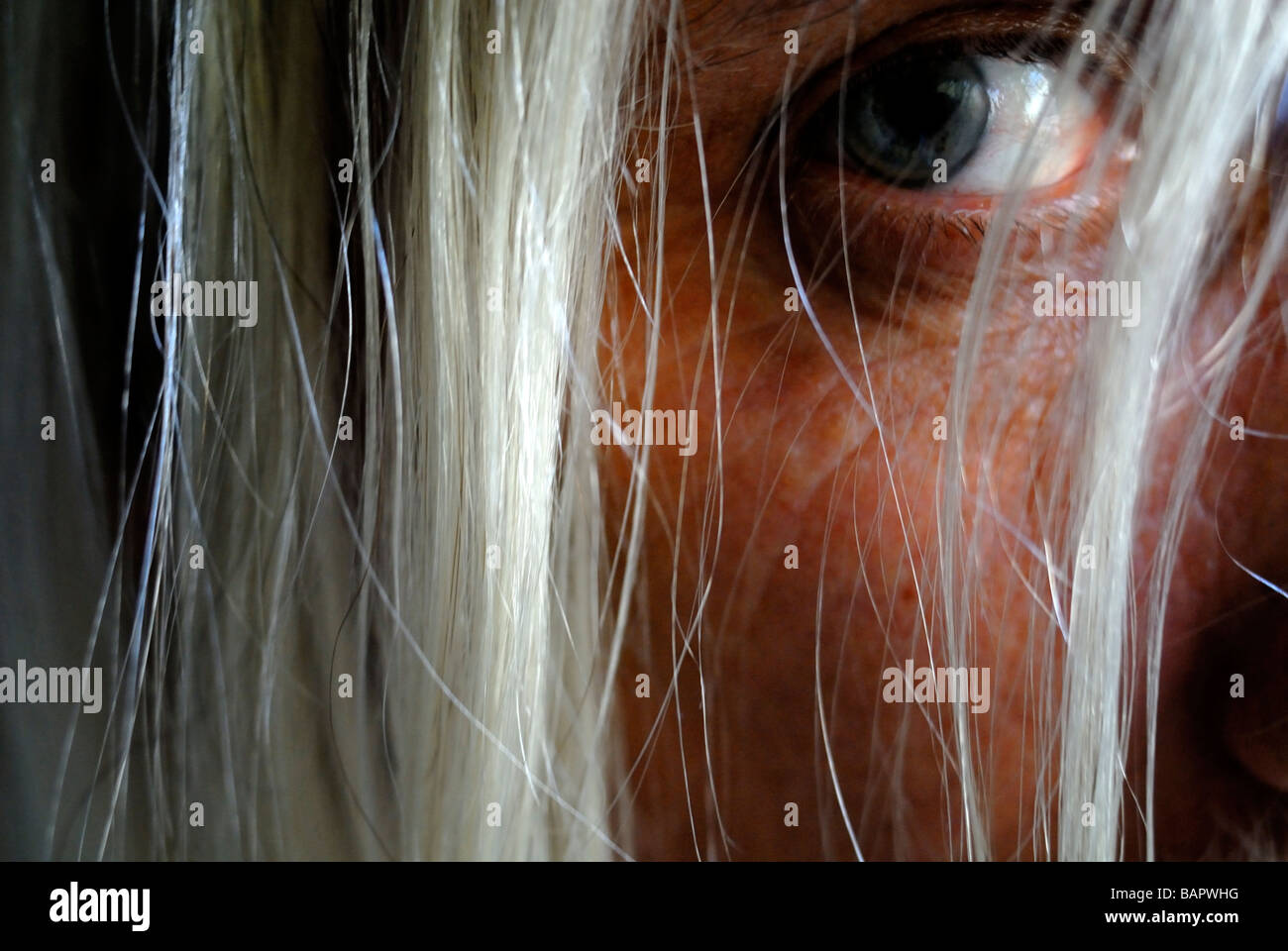 Middle aged man looking with one eye through long unkempt hair - Stock Image