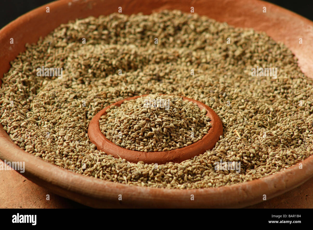 Ajwain also known as carom seeds are rich in calcium and iron and ajwain also known as carom seeds are rich in calcium and iron and uncommon spice used in indian recipes for flavoring the food forumfinder Choice Image