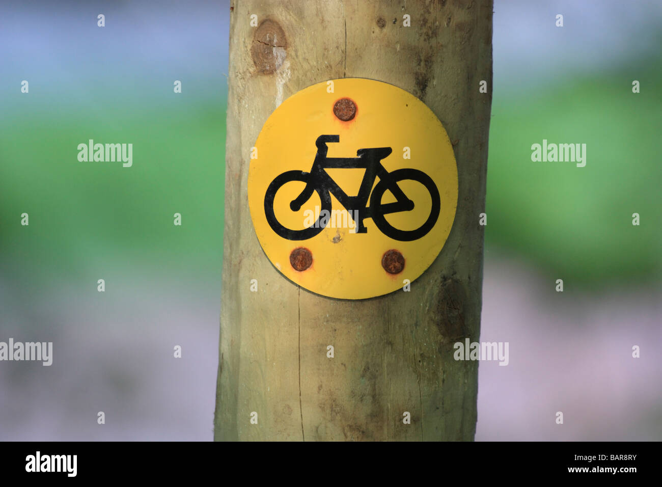 Cycle route sign on a wooden post, waymarking a mountain bike route - Stock Image