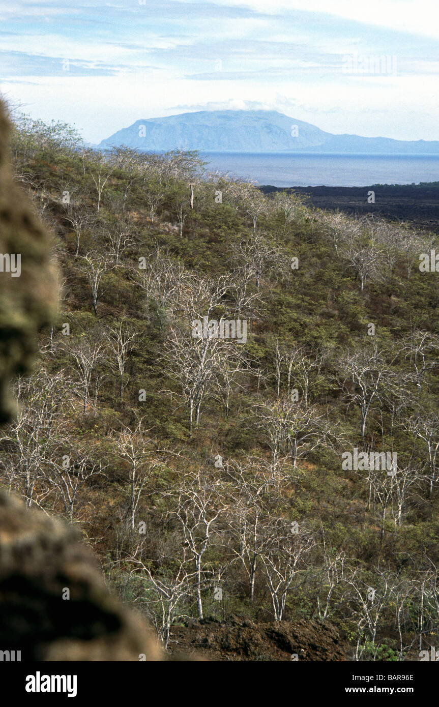 Galapagos Islands. Isabela Island.View from top of the Tagus Cove trail. - Stock Image