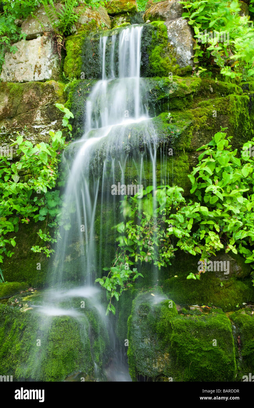 Cascading water fall over lush moss within the grounds of Ness Botanical Gardens, Ness, Cheshire, UK - Stock Image