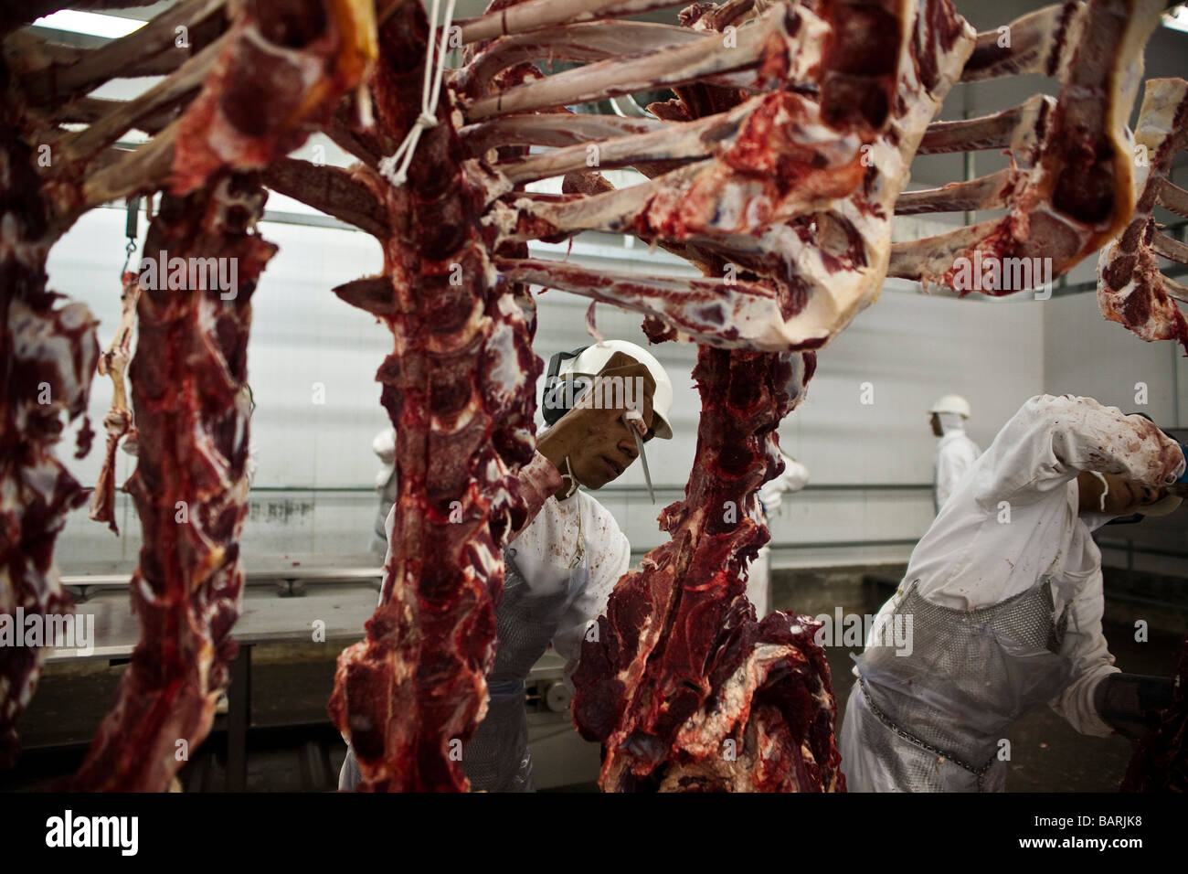 Slaughterhouse Facility meat export Mato Grosso State Amazon Brazil - Stock Image