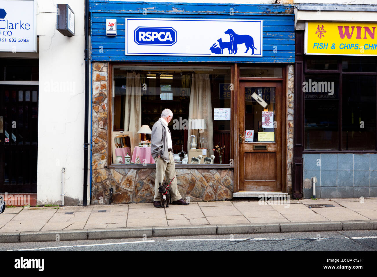 Man with small dog looking at a ceramic cat in the window of RSPCA charity shop - Stock Image