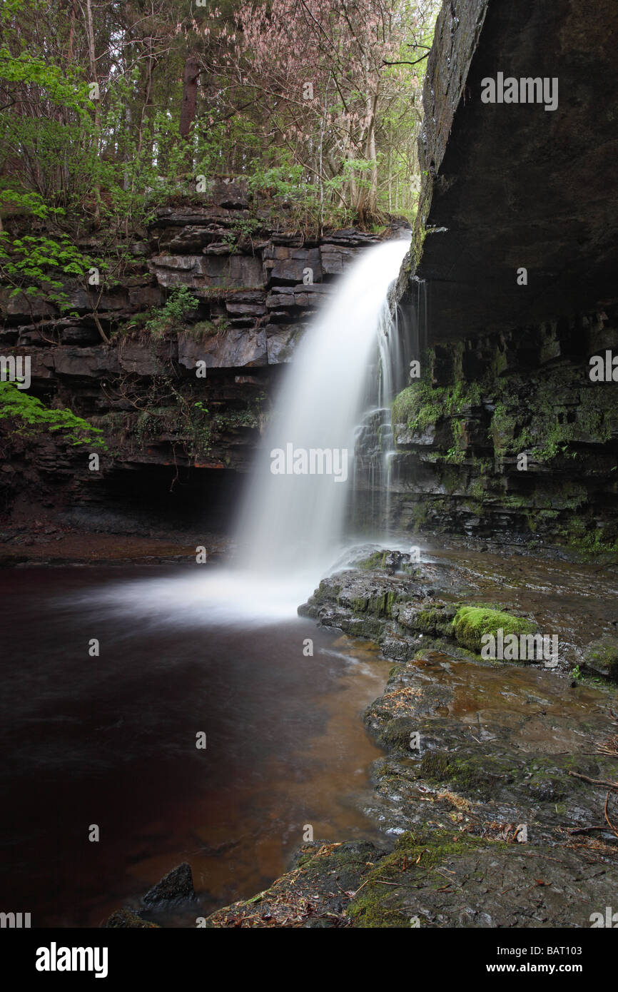 Summerhill Force and Gibsons Cave Bowlees Beck Bowlees Upper Teesdale County Durham - Stock Image