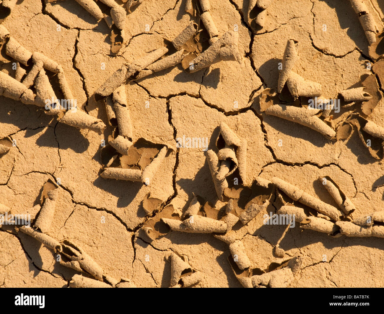 Soil cracks - drought - extreme dry weather - Stock Image