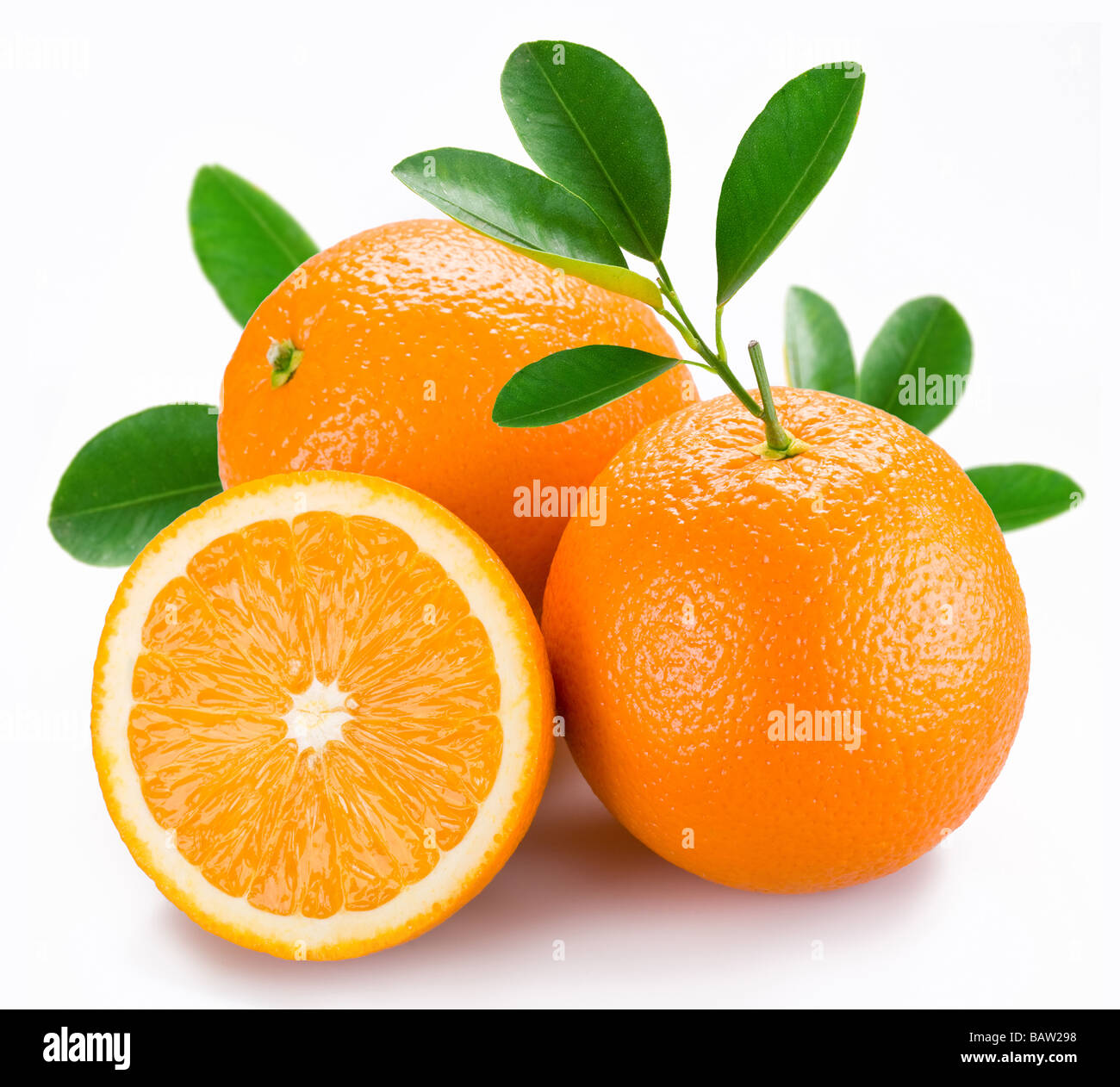Oranges with leaves on a white background - Stock Image