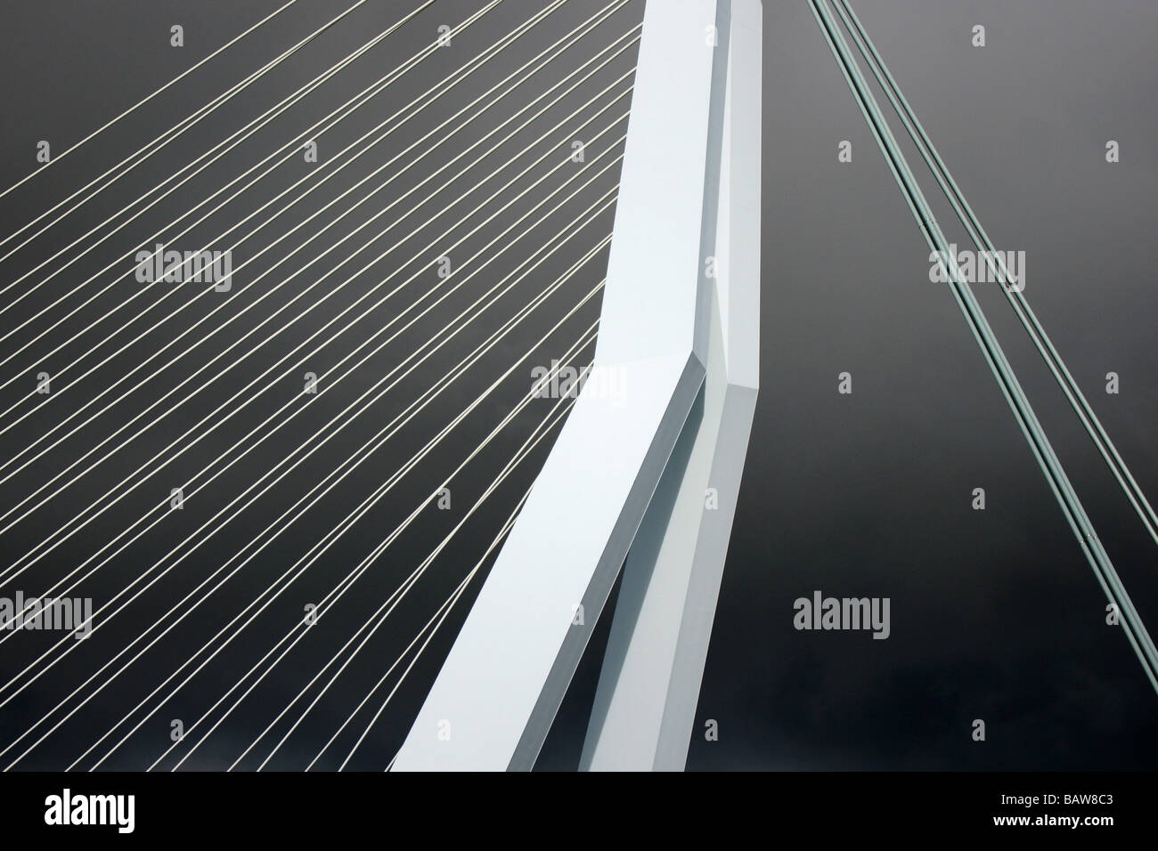 Pylon and ropes of Erasmus Bridge in Rotterdam, Netherlands, stylised abstraction over dark dramatic sky. - Stock Image