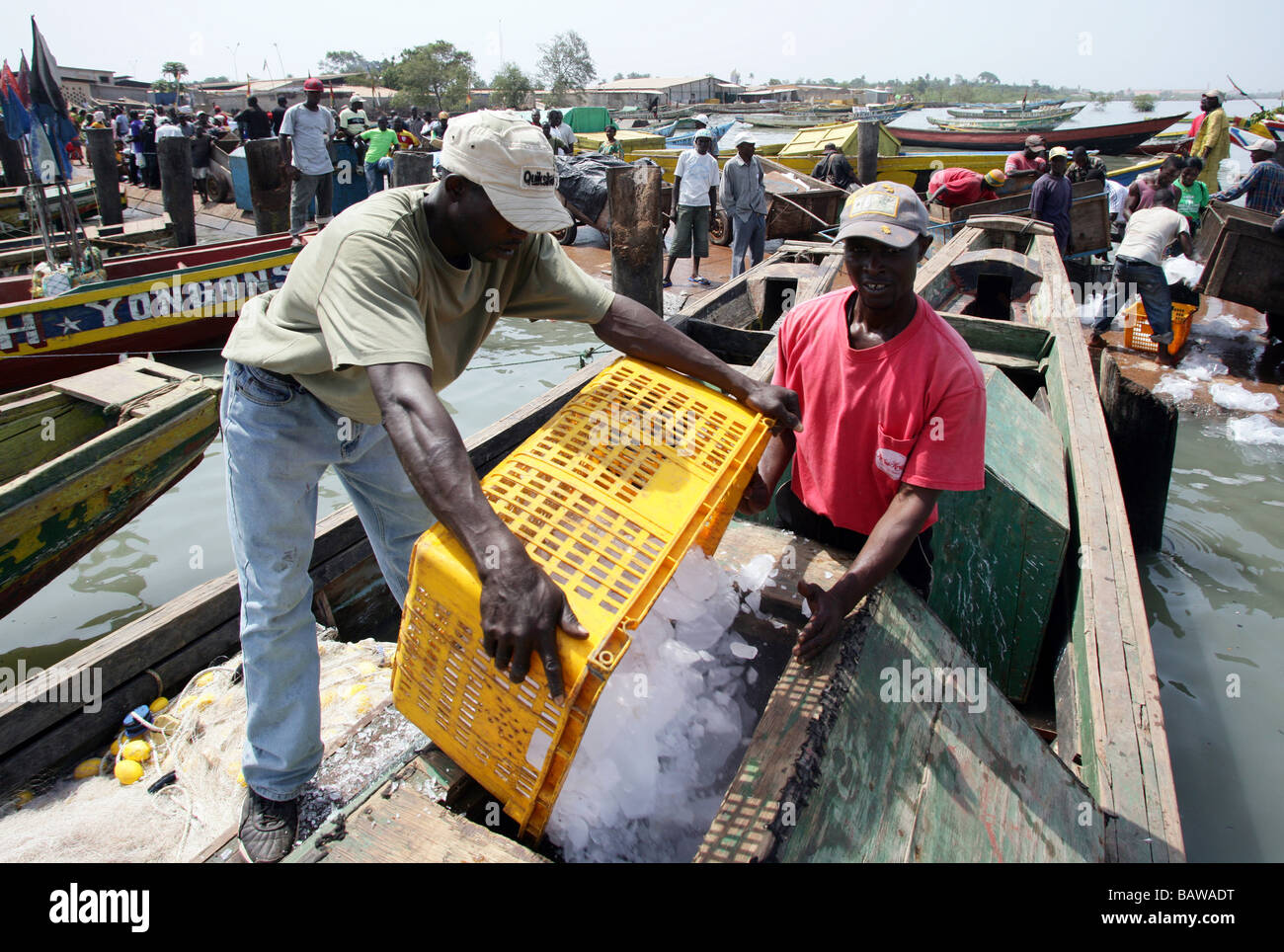 fishermen loading ice to the boats at the fishing port of Kamsar, Guinea, West Africa - Stock Image