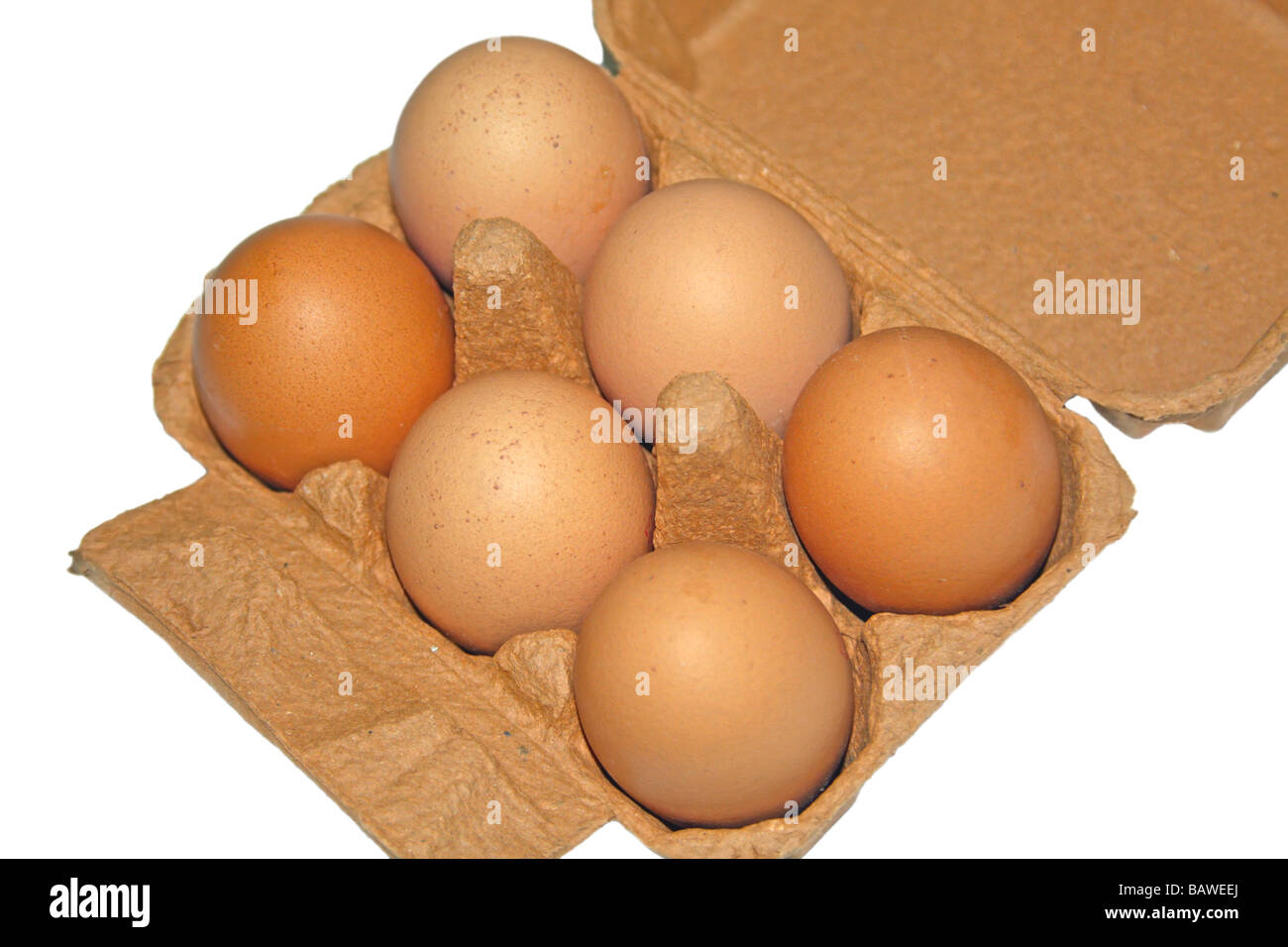 Eggs and carton - Stock Image