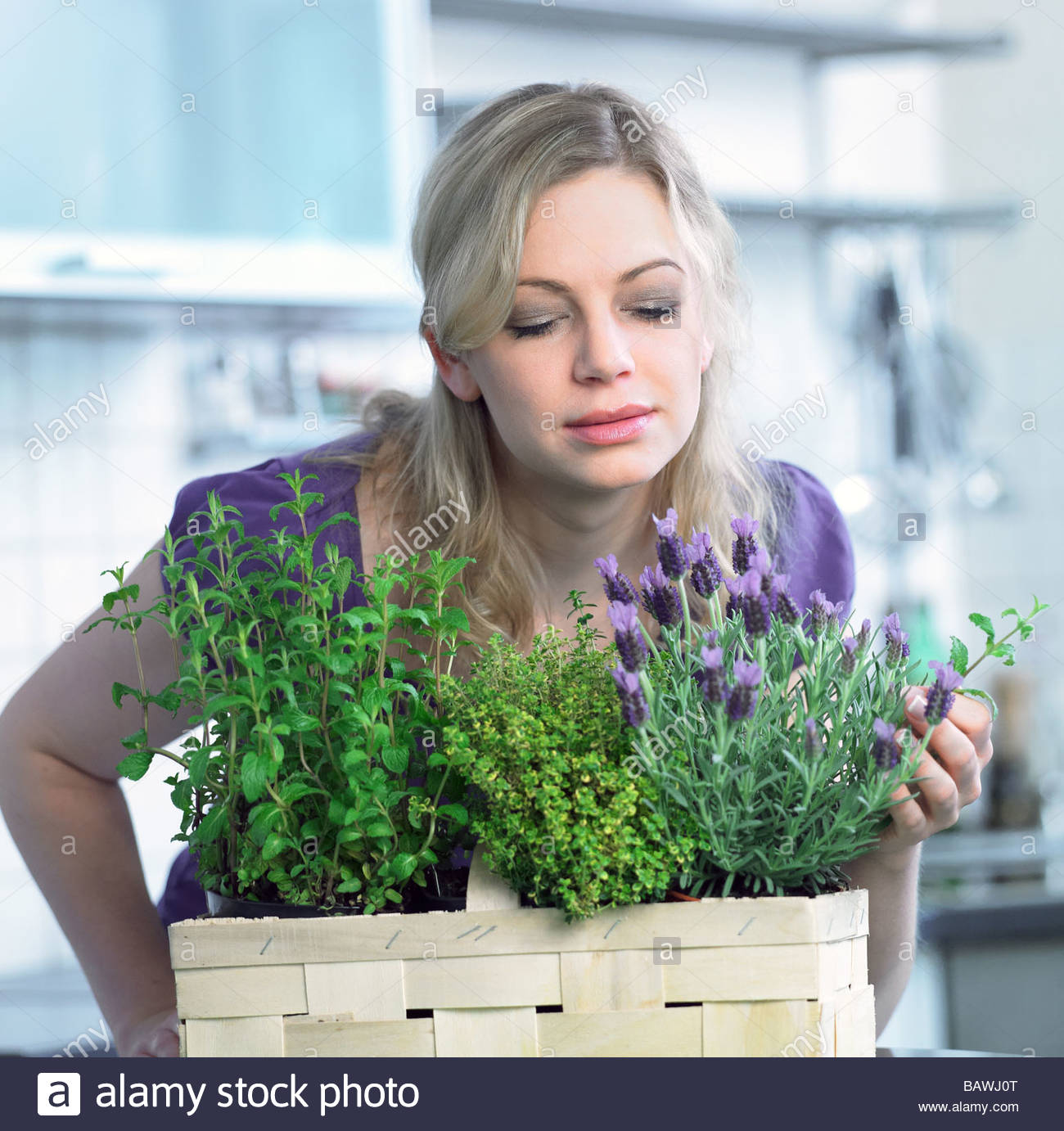 woman is scenting at a basket full of fresh herbs Stock Photo
