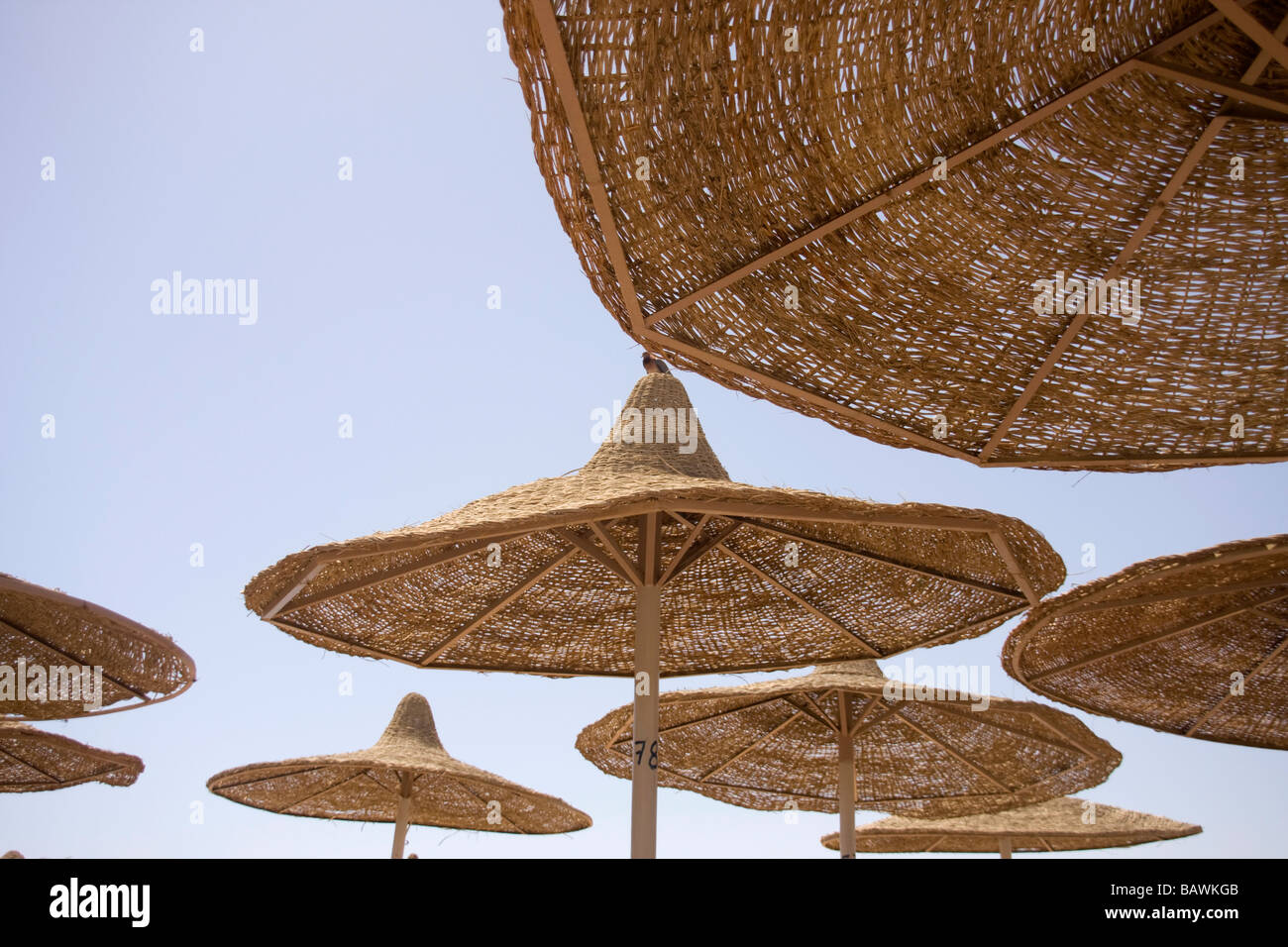 closeup of of beach parasols in sharm el sheikh - Stock Image