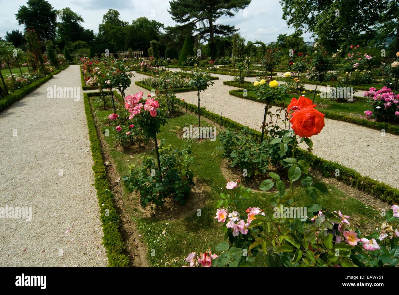 France, Paris, Bois de Boulogne, Parc de Bagatelle, rose garden and orangery Stock Photo