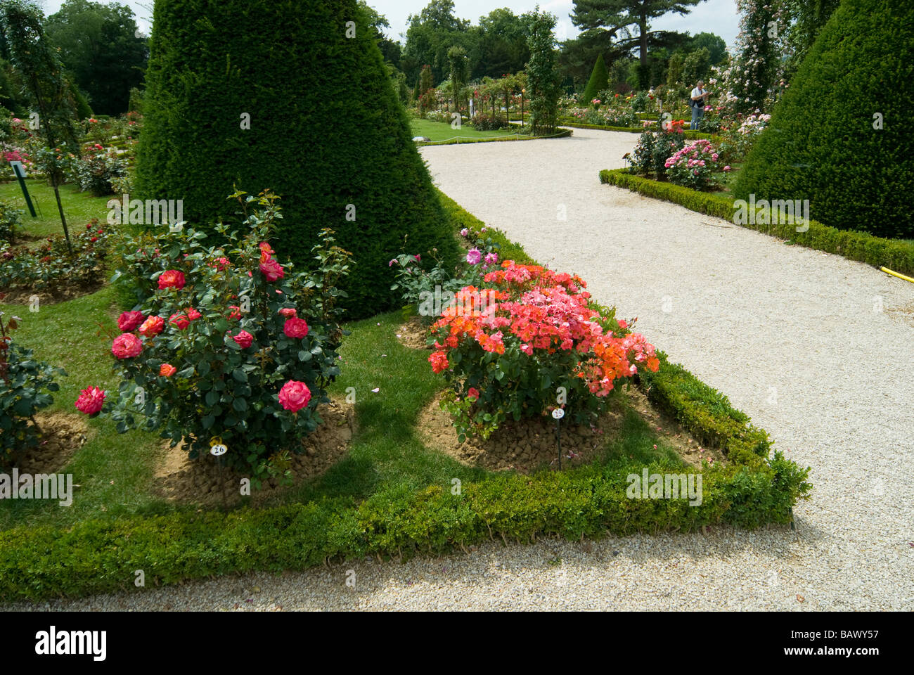 France, Paris, Bois de Boulogne, Parc de Bagatelle, rose garden and orangery Stock Photo