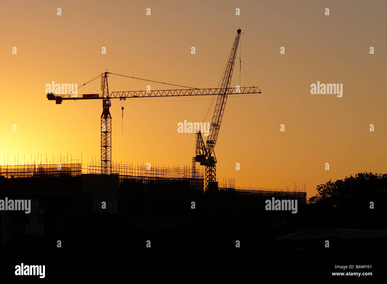 Tower Cranes silhouetted in sunrise - Stock Image