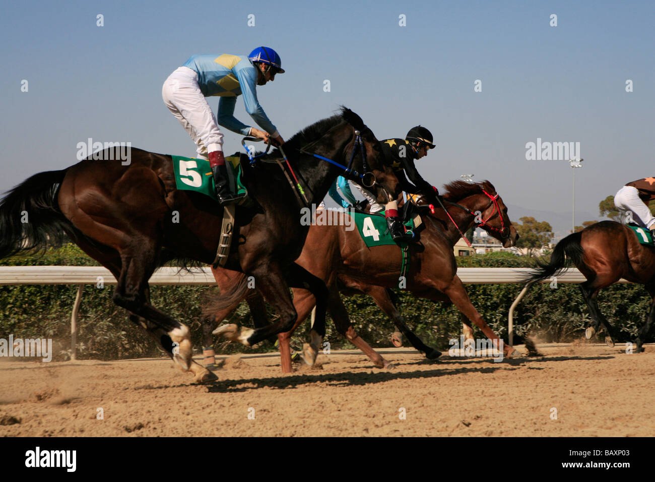 Jockeys riding race horses at a horse race, Nicosia, Lefkosia, South Cyprus, Cyprus - Stock Image