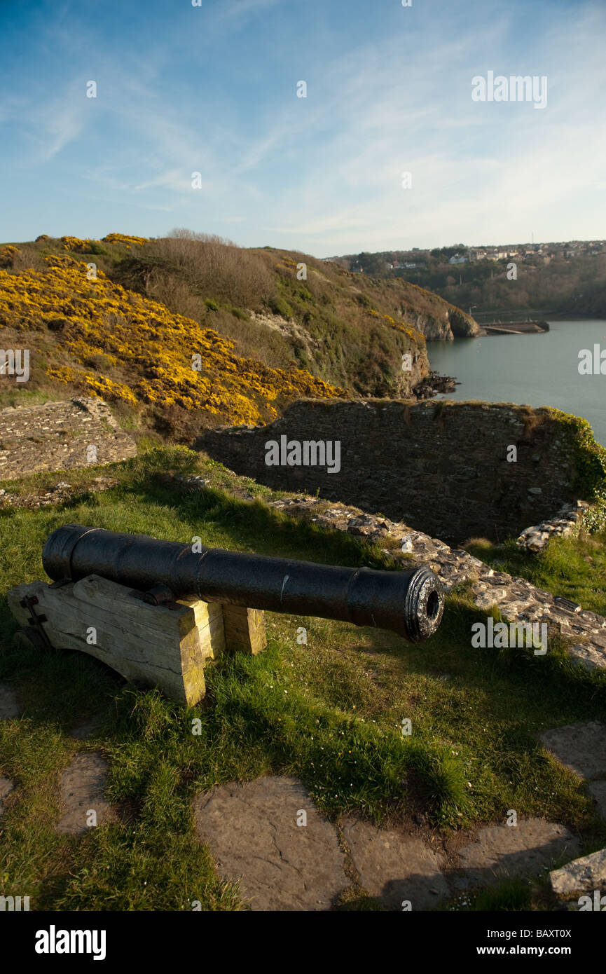 An old cannon at Fishguard Fort Pembrokeshire Coast National Park Wales UK - Stock Image