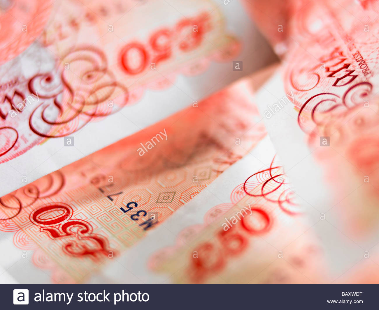 Close up of 50 pound notes - Stock Image