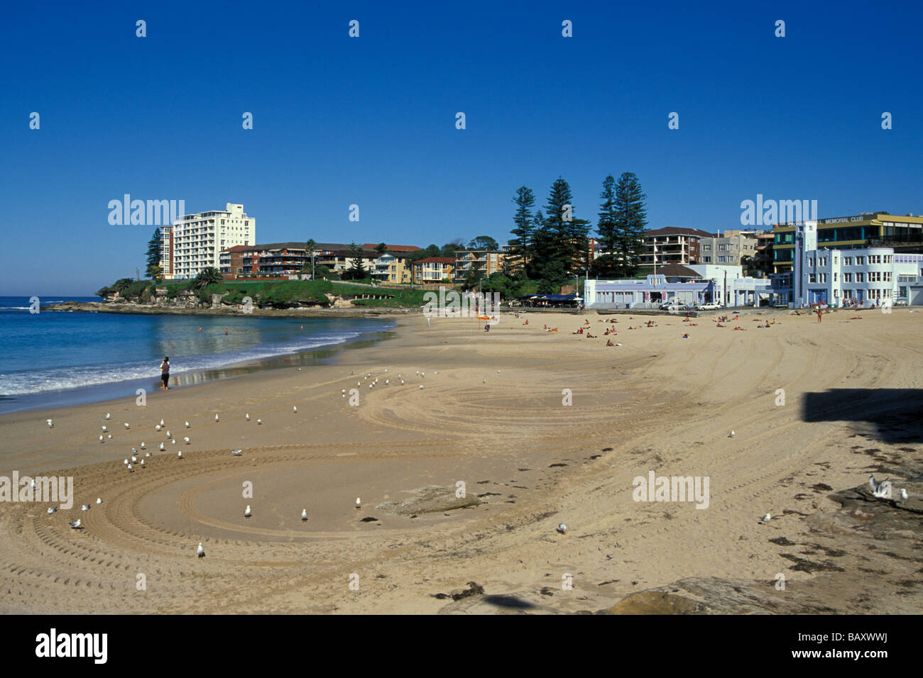 RSL & surf life saving club by Cronulla beach & park south of Botany Bay & Sydney in Sutherland Shire - Stock Image