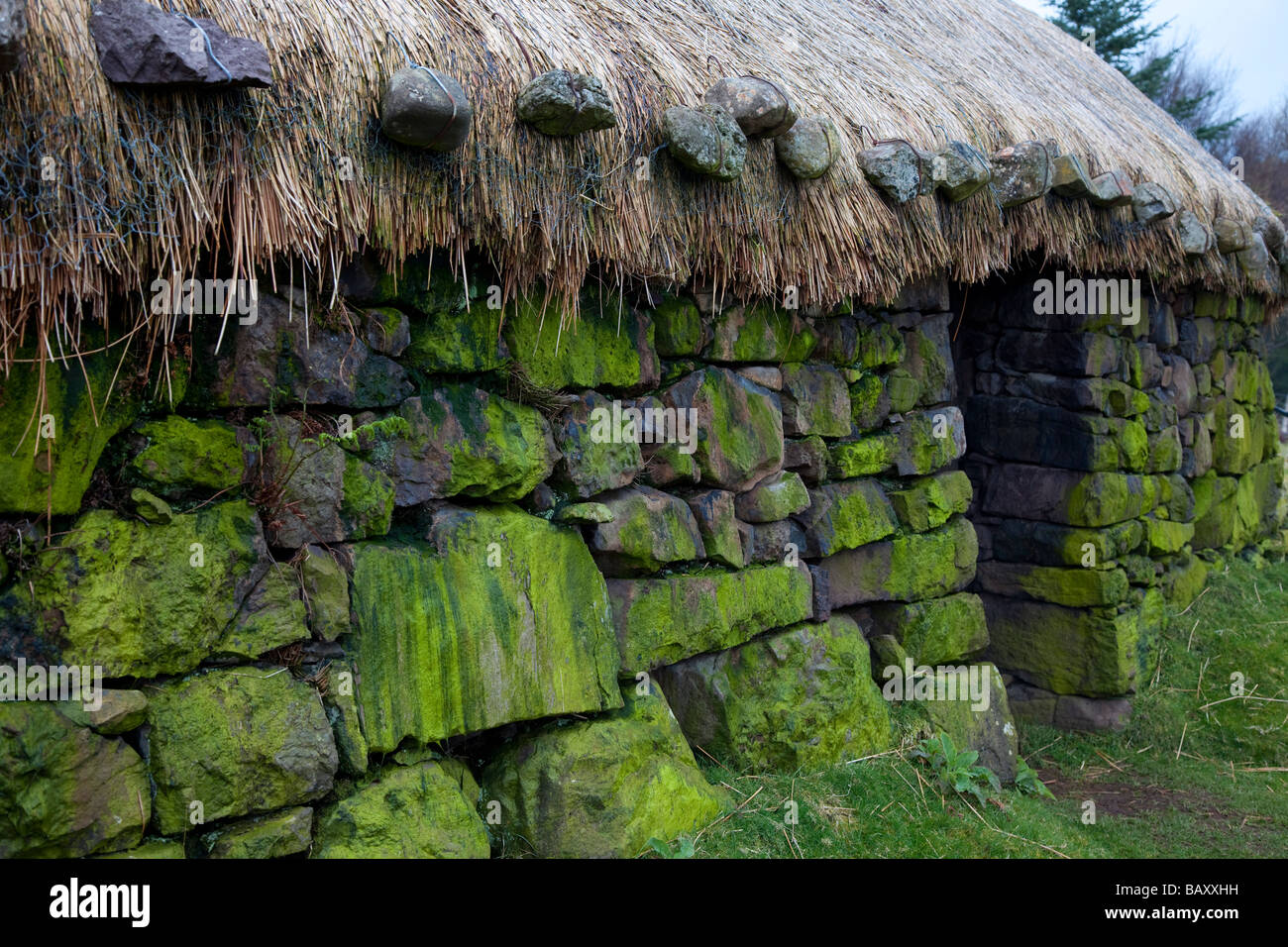 Green Lichen on Old Thatched stone Croft at Colbost, Duirinish peninsula, Isle of Skye, Scotland, UK - Stock Image