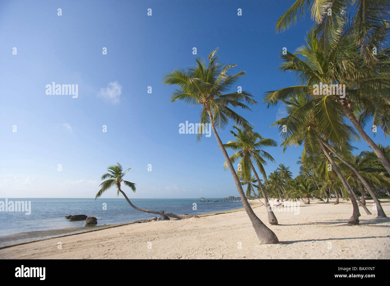 The Moorings Village (has to be mentioned in the caption, not available for commercial use), Islamorada, Florida, - Stock Image